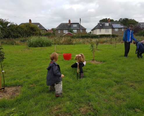 Planting bulbs in the Centenary Orchard