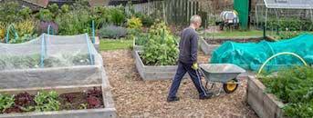 John volunteering in the EATS Rosyth Community Garden