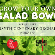 Grow your own salad bowl promotional image